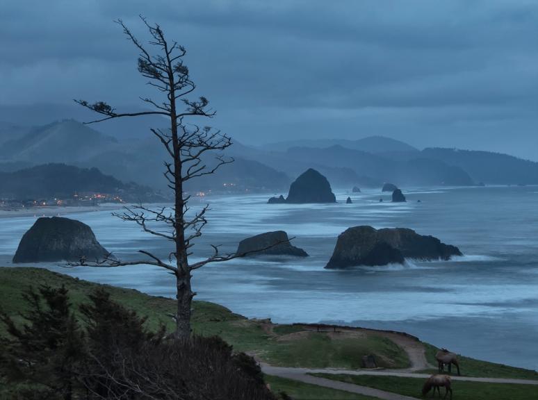 Cannon Beach Oregon no copyright photographer John Fowler from Placitas, NM, USA