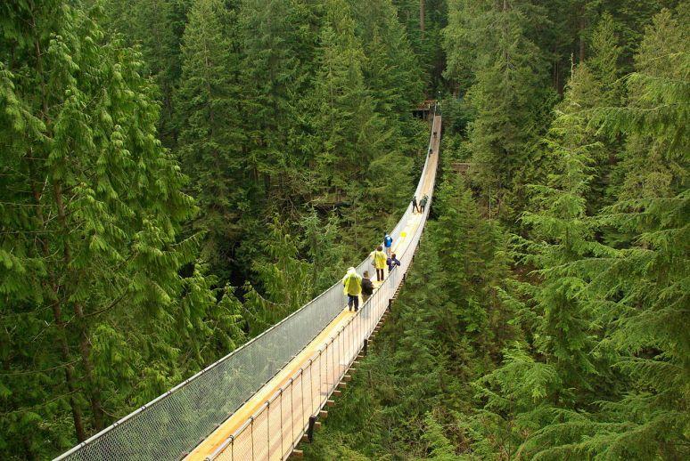 Capilano_suspension_bridge no copyright photographer David J Laporte