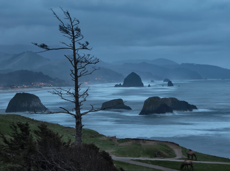Cannon Beach Oregon no copyright photographer John Fowler from Placitas, NM, USA